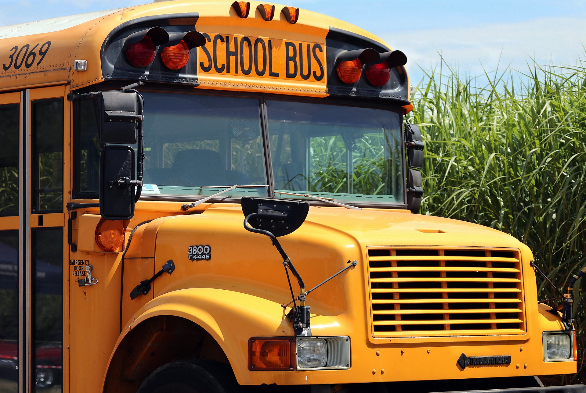 Photo of yellow school bus